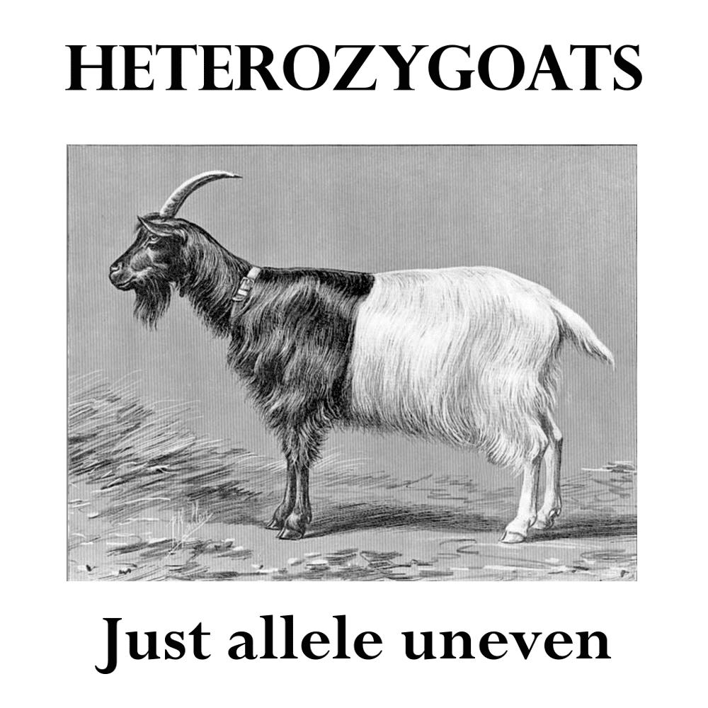 Heterozygoats