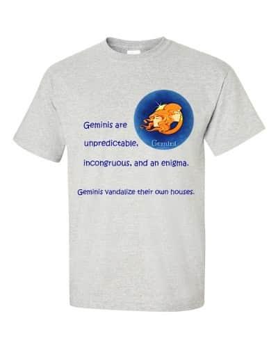 Gemini T-Shirt (ash)