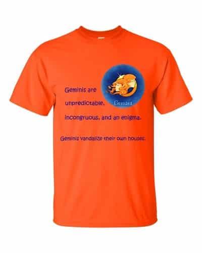 Gemini T-Shirt (orange)