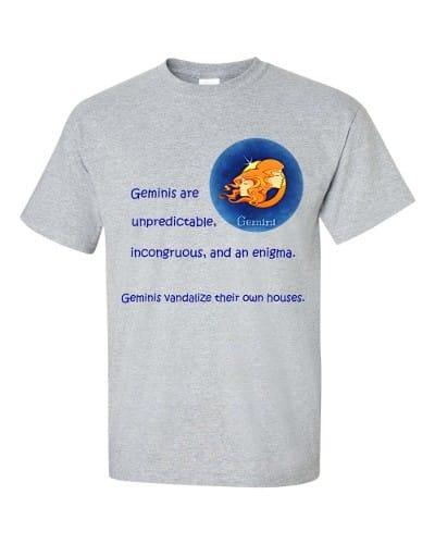 Gemini T-Shirt (slate)