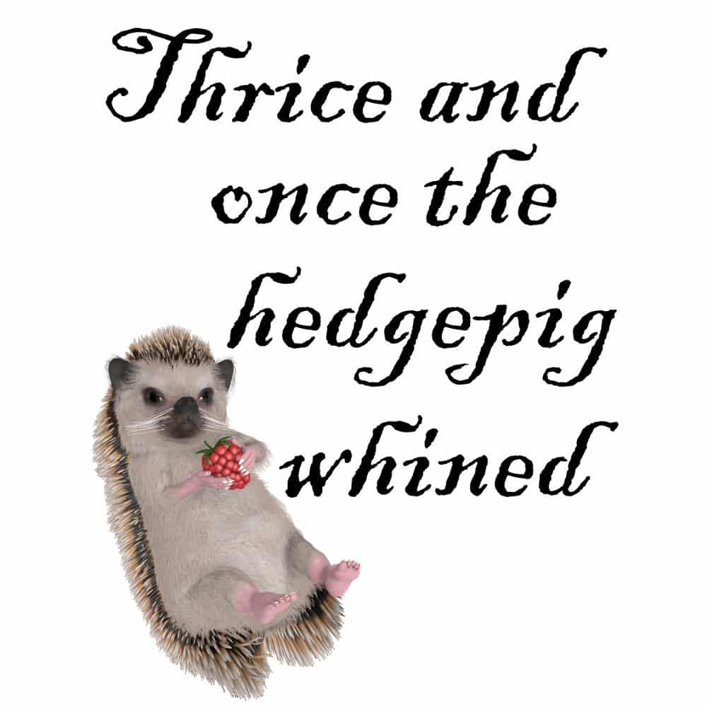 Thrice and Once the Hedgepig Whined