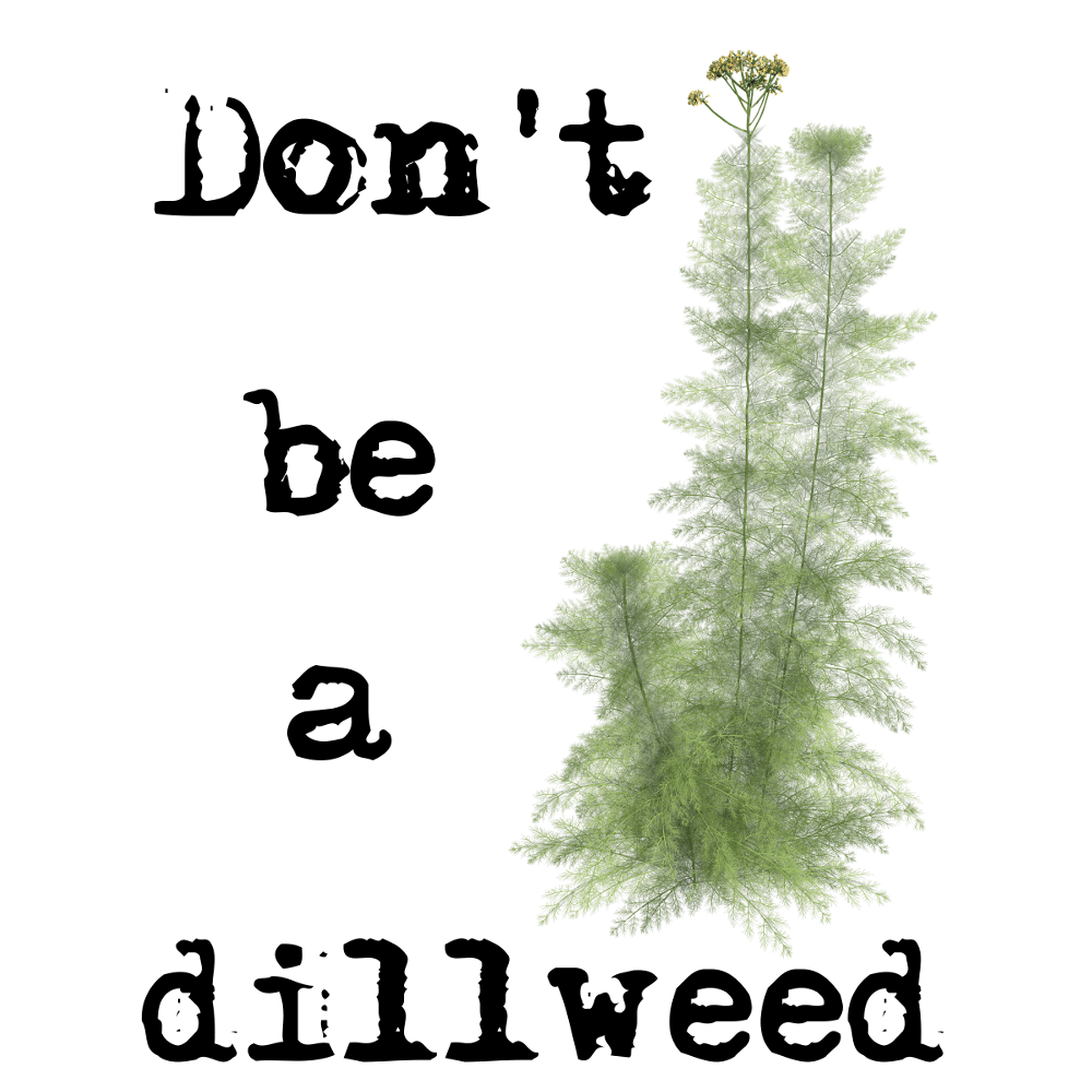 Don't be a Dillweed